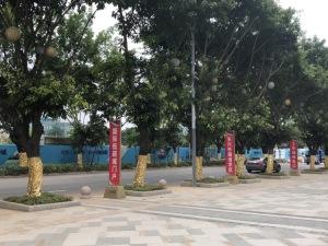 深圳凯东吉祥悦府新房楼盘实景图9